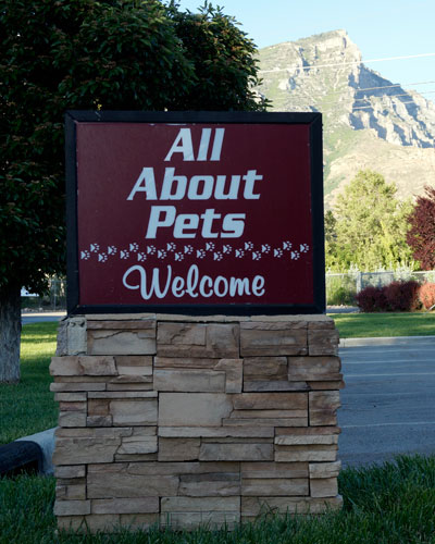 Welcome to All About Pets